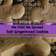 No Chill No Spread Soft Gingerbread Cookies