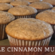 Simple Cinnamon Muffins